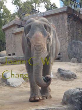 attachments/200912/9287406530.jpg